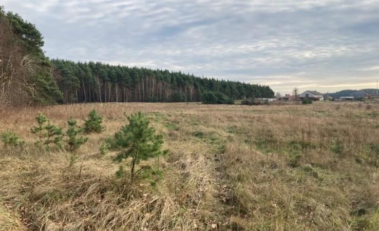 działka na sprzedaż - Nowa Wieś Wielka, Dobromierz